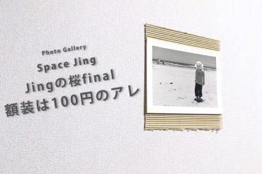 写真展「Jingの桜final」 額装は100円のアレ