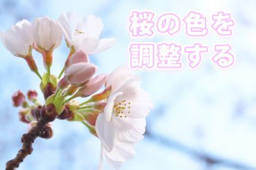 桜の色を調整するには、あのパラメーターが重要です。