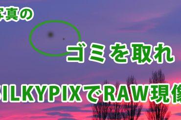 RAW現像でゴミを取れ!SILKYPIXのゴミ取り機能の使い方