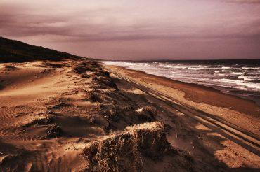 3月の浜辺にて