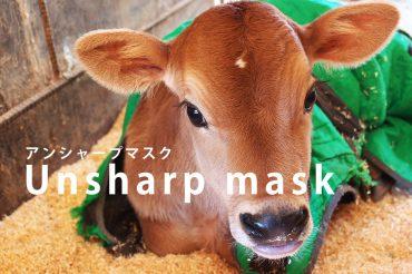アンシャープマスク(USM)とは?